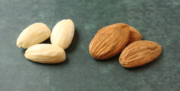 Regular blanched almonds on the left; Sicilian Pizzuta almonds on the right.