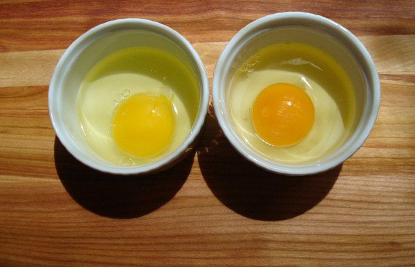 Supermarket egg on the left; farm-fresh egg on the right.