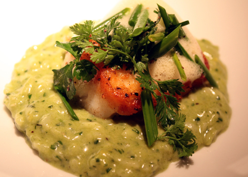 Spring garlic risotto with monkfish, as cooked by a pastry chef.