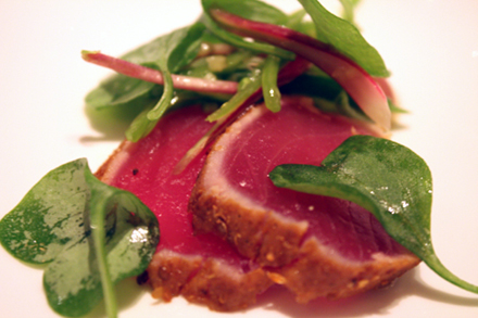 Bigeye tuna makes a big impression.