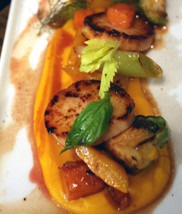 Scallops atop squash puree.