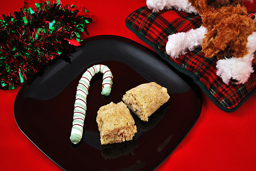 Christmas goodies for your canine friends. (Photo courtesy of Wag Hotels)