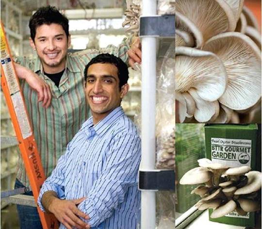Two UC Berkeley business school grads and their innovative mushroom company. (Photo courtesy of Back to the Roots)