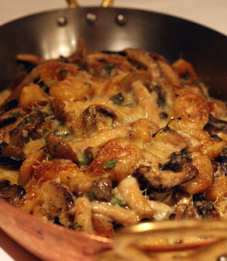 Gnocchi with wild mushrooms.