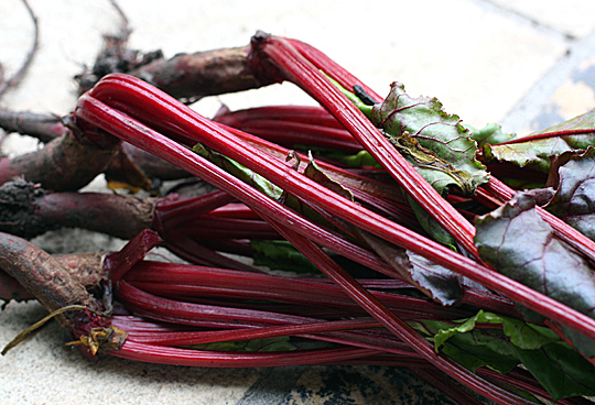Sweet beet greens.