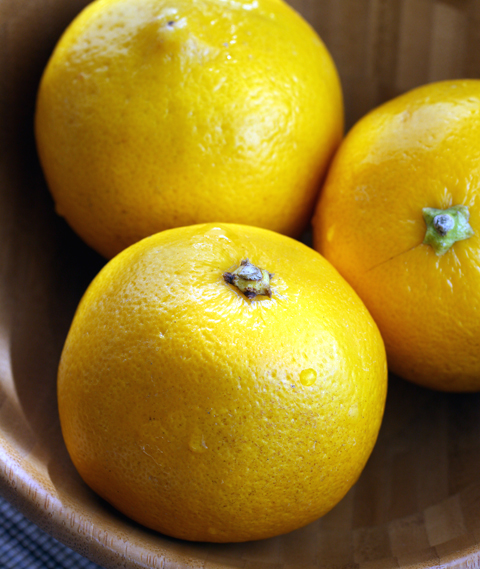 ...still look like tangy lemons -- but they're not.