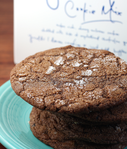 Bakesale Betty's ginger molasses cookies to bake at home.