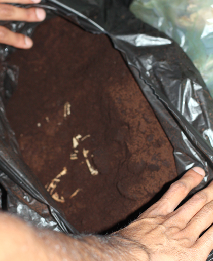 Back to the Roots reuses 20,000 pounds of discarded Peet's coffee grounds a week.