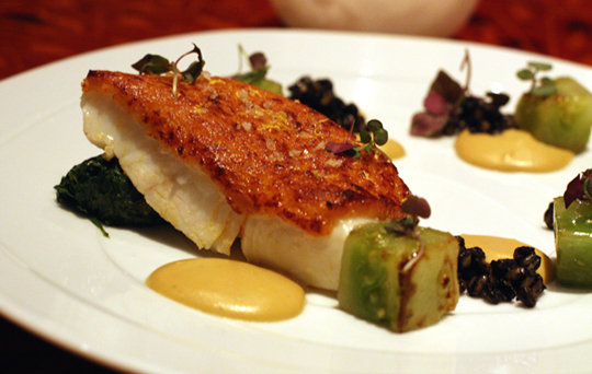 Moist halibut with a crispy, savory crust of uni at Aziza.