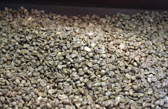 After the drying and fermenting are completed, the beans look like this.