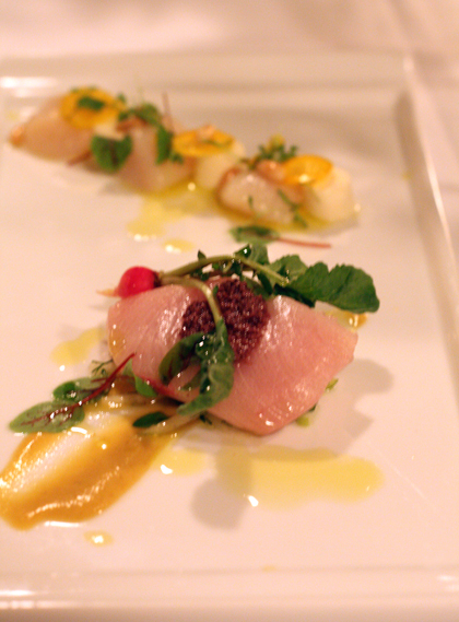 Terje's yellowtail crudo with green apple.