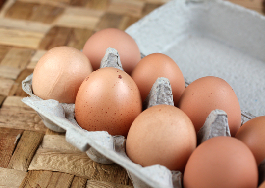 The eggs are brown, sometimes speckled, sometimes not.