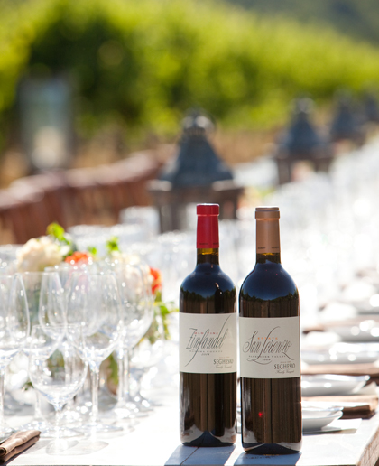 Enjoy Seghesio wines and a tasting menu in the vineyards. (Photo courtesy of Richard Knapp)