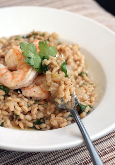 Barley risotto with shrimp -- hearty, chewy and wonderful.