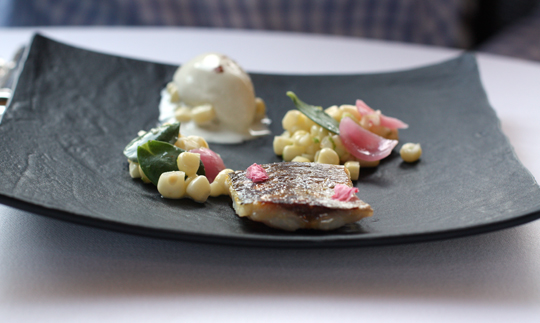 Mackerel with miso ice cream.