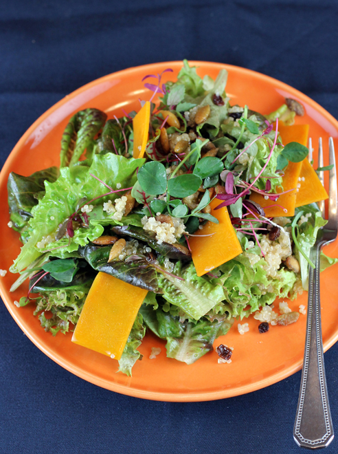 "The very gourmet tasting ""Winter Salad'' kit from Ecopia Farms."