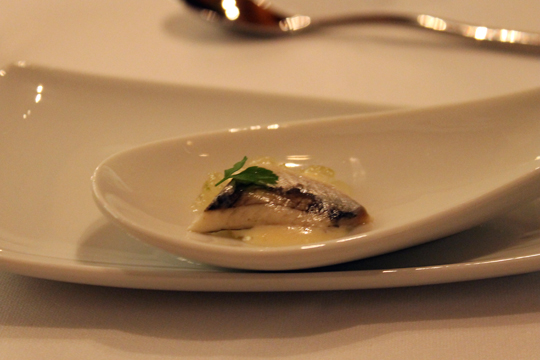 An amuse bouche of Spanish sardine.