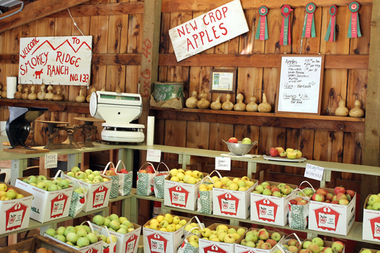 Heirloom apples galore at Smokey Ridge Ranch's farm store.