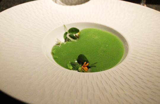Vibrant pea soup.