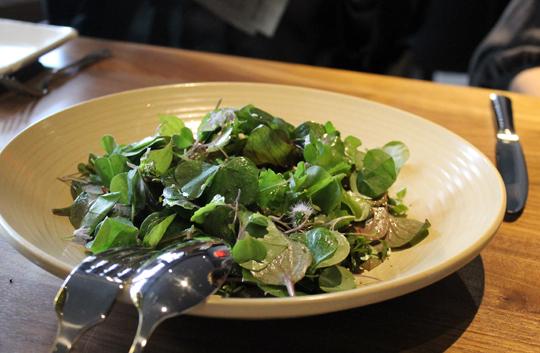 Wild green salad.
