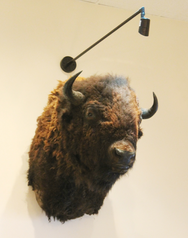 Joined by a buffalo head.