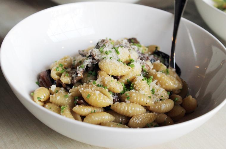 Gnochetti with mushroom ragout.