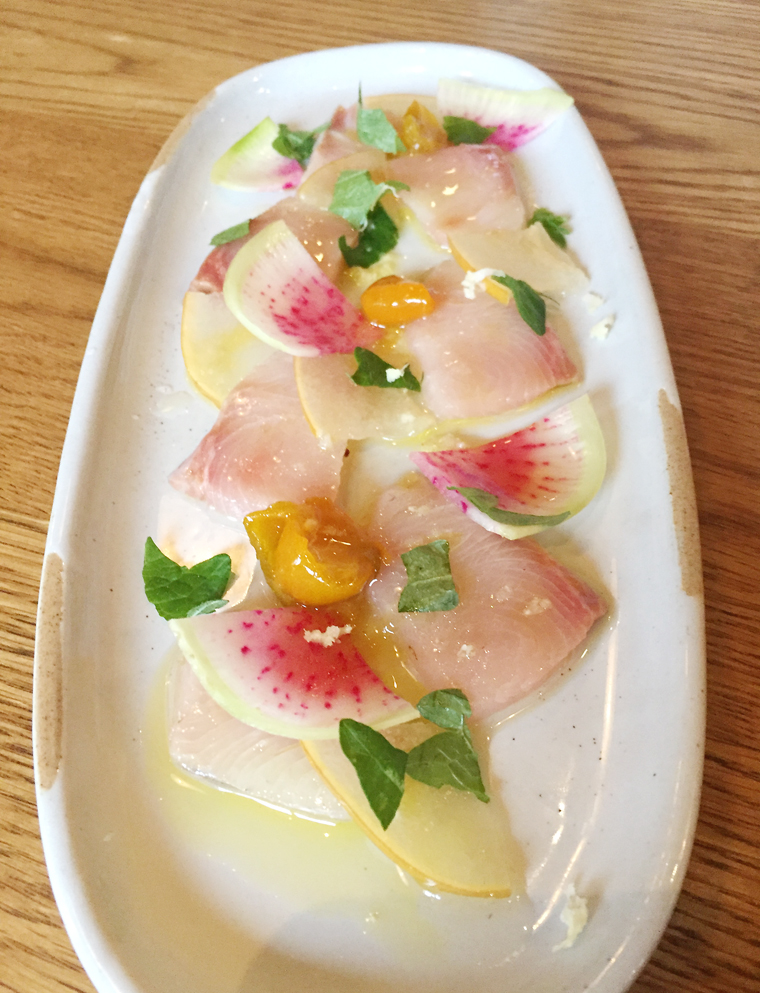 Beautiful yellowtail crudo at Camper in downtown Menlo Park.