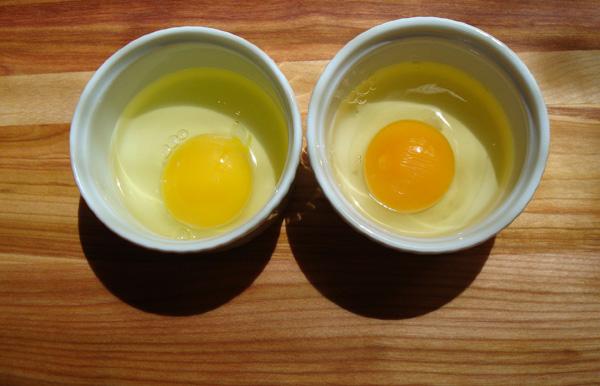 Supermarket egg on the left; farm-fresh egg on the right.