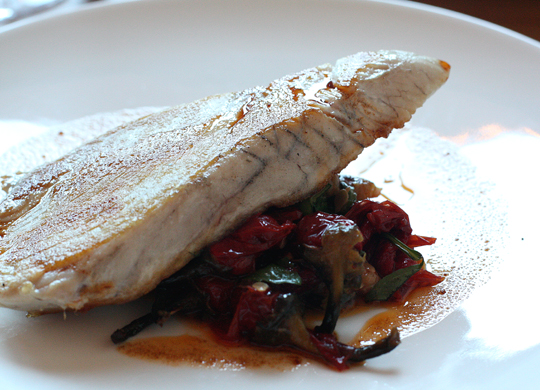 Albacore with Italian peppers and grilled squash.