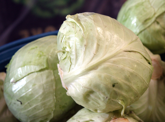 Crunchy, organic, locally grown green cabbage forms the basis of the krauts.