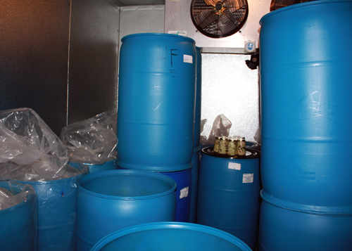 The former insulated gelato freezer can store 21,000 pounds of kraut.