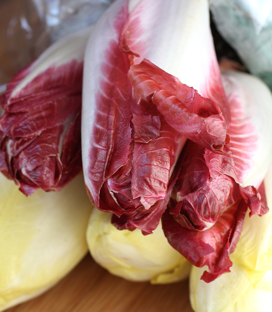 Did you know there's only one company in the United States that grows Belgian endive?