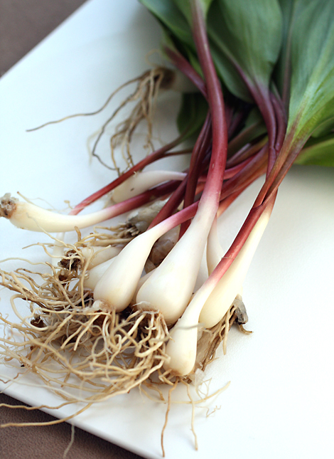 The love affair with ramps.