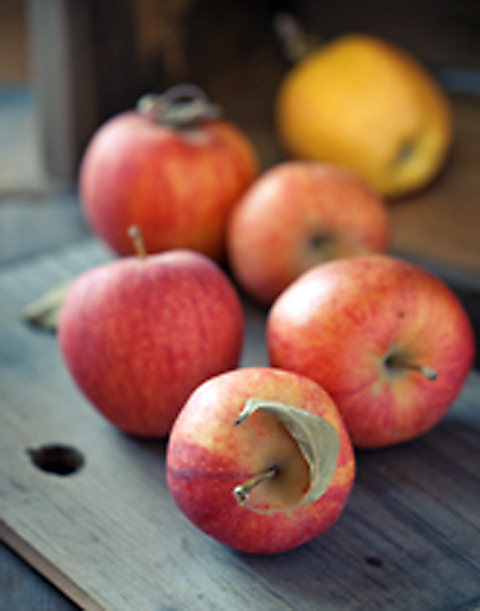 Get them while you can -- beautiful Gravenstein apples. (Photo courtesy of the FruitGuys