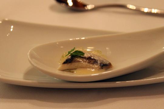An amuse bouche of Spanish sardine.