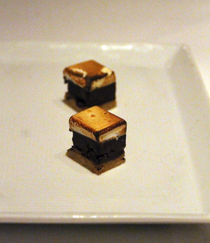 The world's smalleds s'mores.