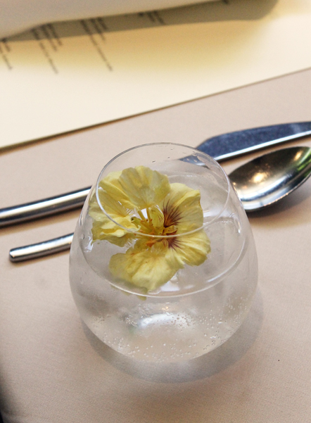 A non-alcoholic nasturtium-infused drink. The flower is from Love Apple Farms.