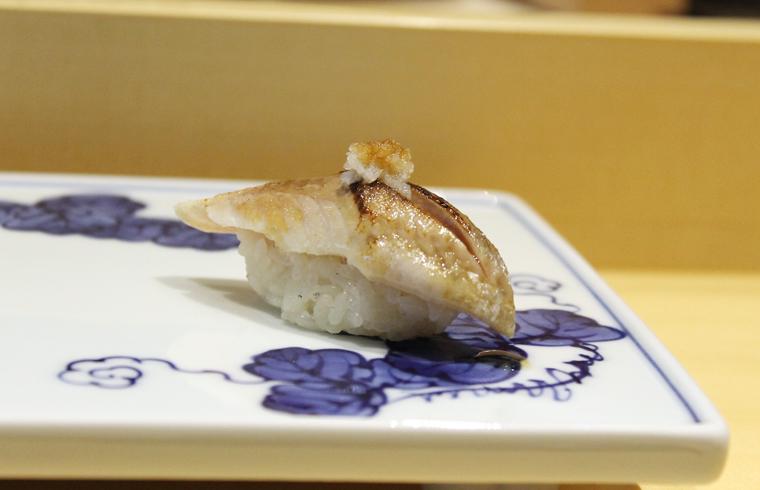 Japanese sardine