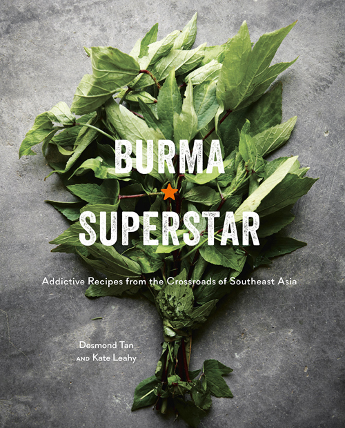 BurmaSuperstarBook