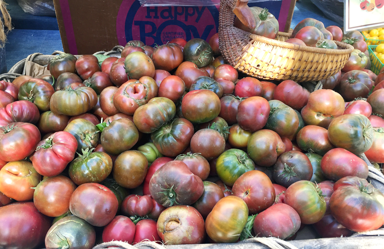 Beautiful summer tomatoes for sale.