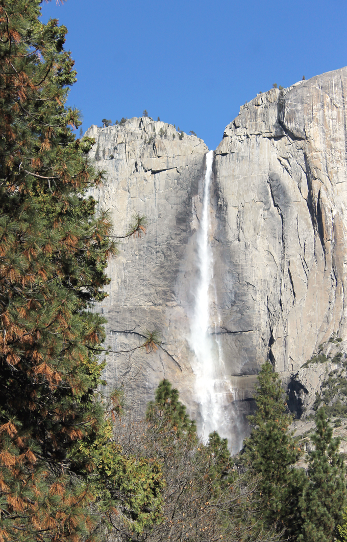 With last winter's onslaught of rainstorms, the waterfalls are a gushing this year in the park.