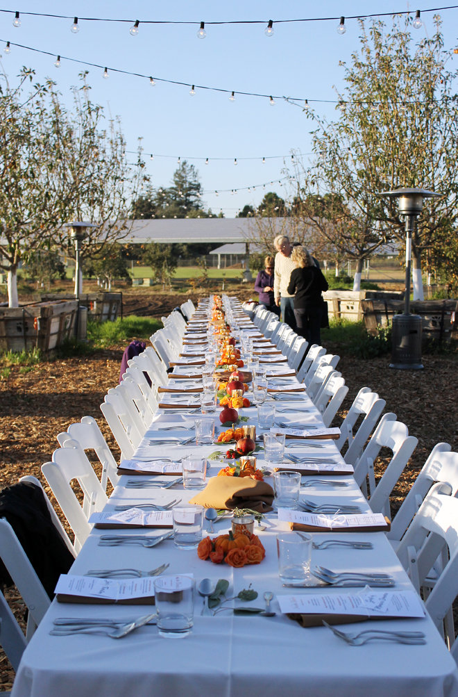 The setting for October's farm dinner.