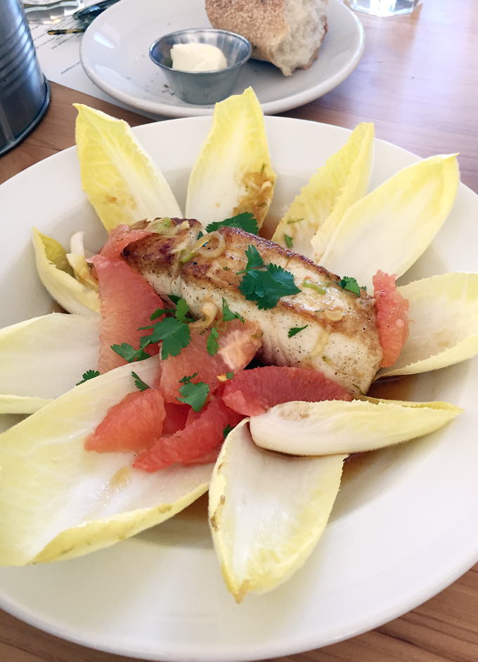 Halibut arranged prettily with endive and grapefruit segments.