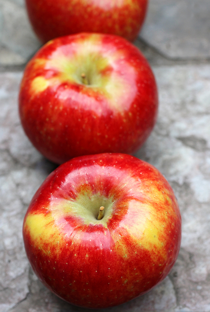 Red-skinned with sunshine-yellow striations, the Pazazz is a relative of the Honeycrisp.